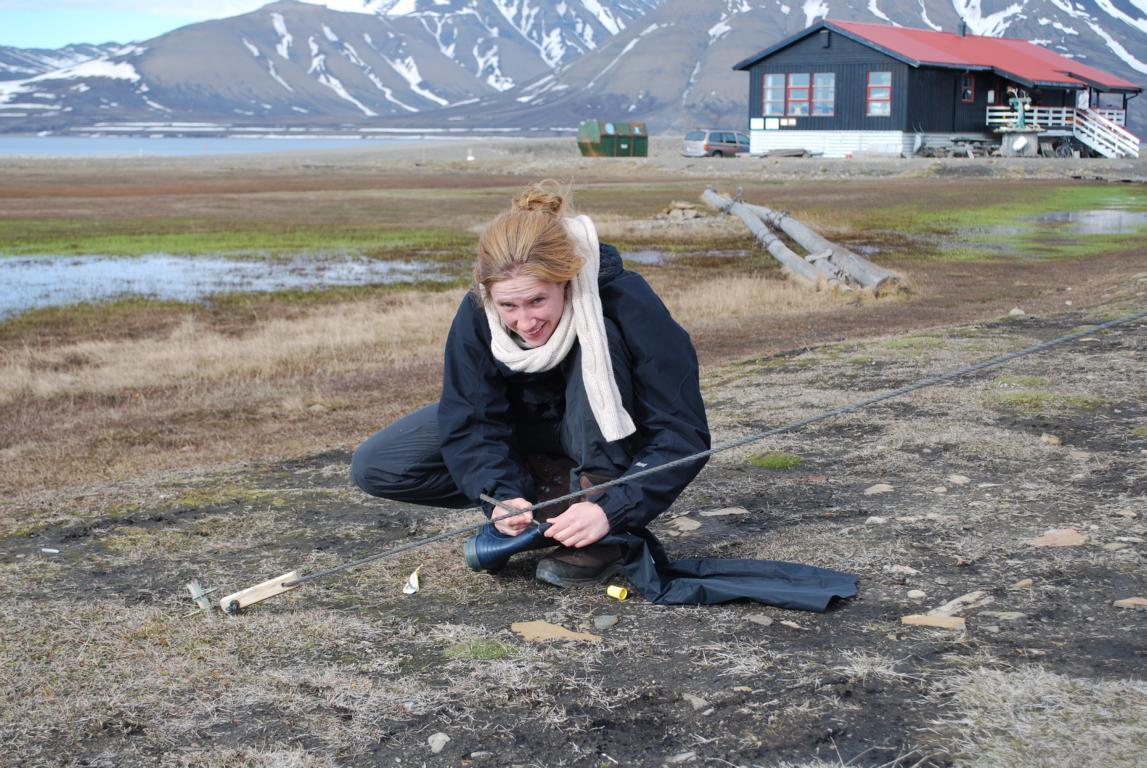 Silberfüchse Unterwegs · Spitzbergen- Alias Svalbard